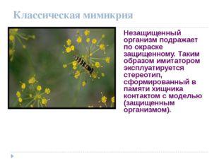Классическая мимикрия Незащищенный организм подражает по окраске защищенному.