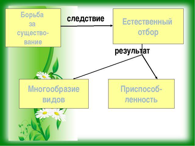 Борьба за существо- вание Естественный отбор Многообразие видов Приспособ- ле...