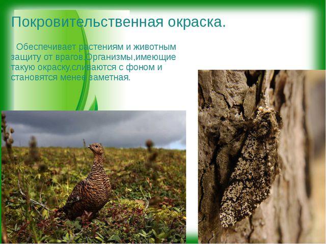 Покровительственная окраска. Обеспечивает растениям и животным защиту от враг...