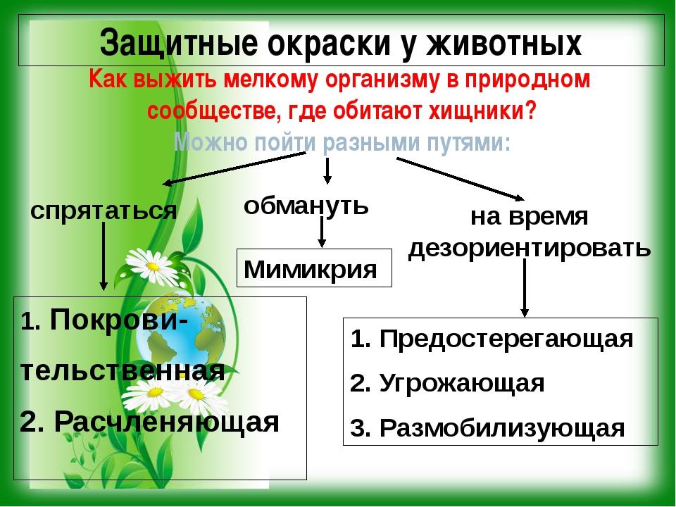 Защитные окраски у животных Как выжить мелкому организму в природном сообщест...