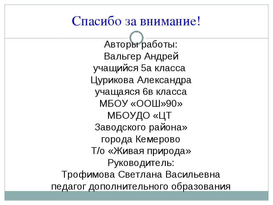 Спасибо за внимание! Авторы работы: Вальгер Андрей учащийся 5а класса Цуриков...