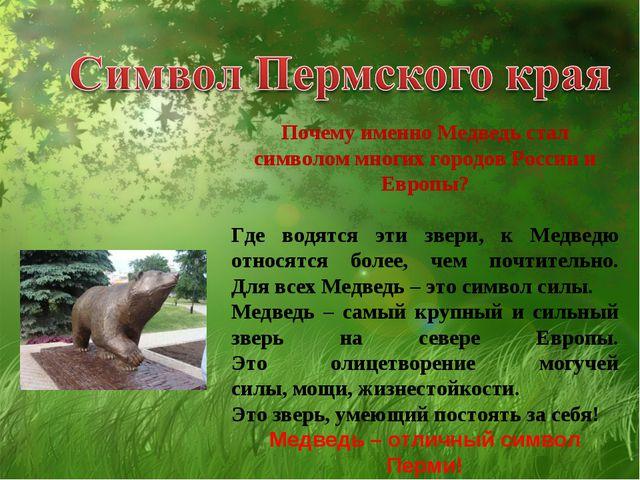 Почему именно Медведь стал символом многих городов России и Европы? Где водят...