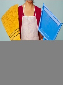 http://feme.com.ua/uploads/posts/2010-12/1292267588_cleaning002.jpg