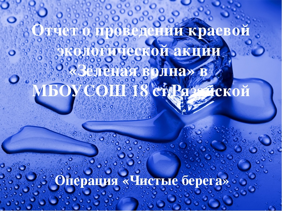 Отчет о проведении краевой экологической акции «Зеленая волна» в МБОУСОШ 18 с...