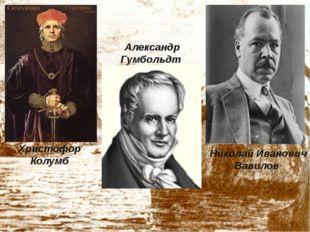 Христофор Колумб Александр Гумбольдт Николай Иванович Вавилов