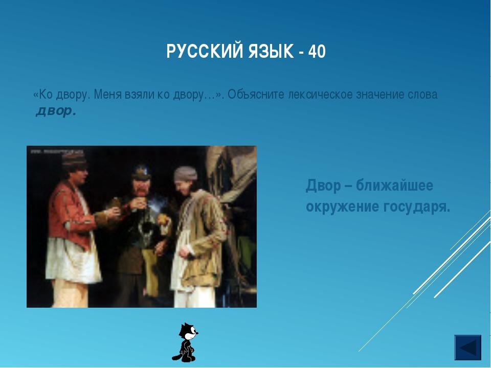 РУССКИЙ ЯЗЫК - 40 «Ко двору. Меня взяли ко двору…». Объясните лексическое зна...
