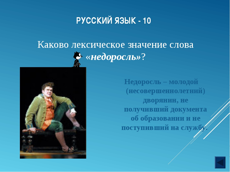 РУССКИЙ ЯЗЫК - 10 Недоросль – молодой (несовершеннолетний) дворянин, не получ...