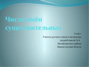 Число имён существительных 5 класс Учитель русского языка и литературы средне