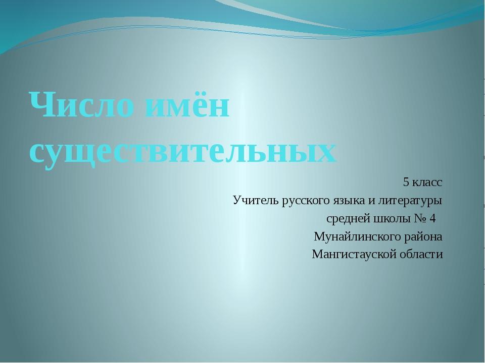 Число имён существительных 5 класс Учитель русского языка и литературы средне...