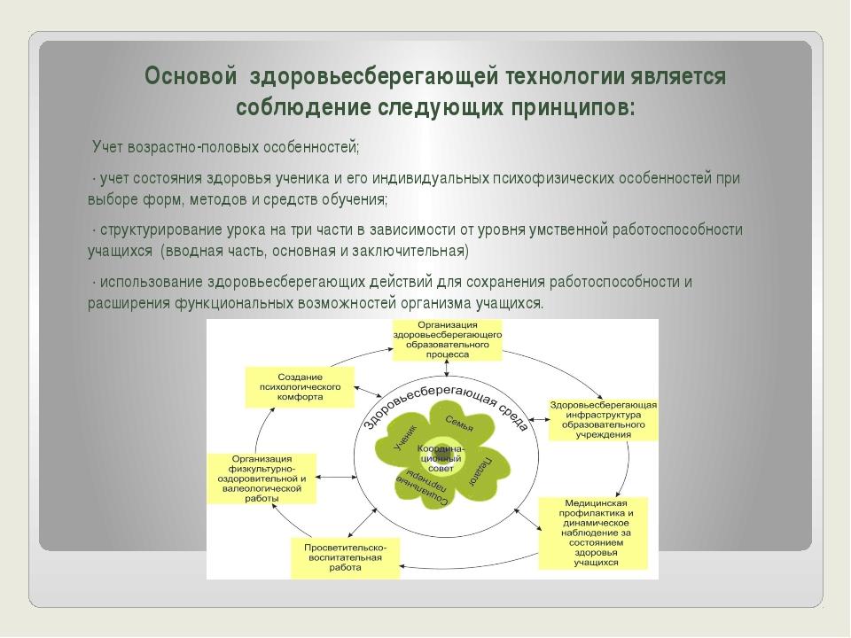 Основой здоровьесберегающей технологии является соблюдение следующих принцип...