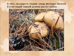 * * В лесу, на радость людям, средь молодых сосенок, В блестящей темной шляпк
