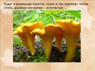 * * Ходят в рыженьких беретах, осень в лес приносят летом. Очень дружные сест