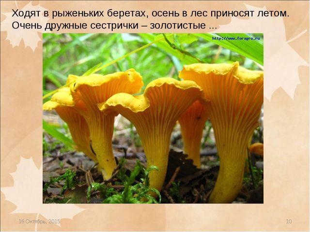 * * Ходят в рыженьких беретах, осень в лес приносят летом. Очень дружные сест...