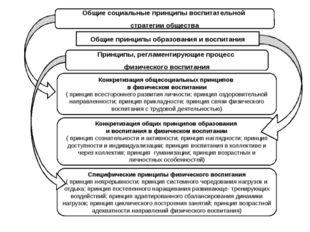 Общие социальные принципы воспитательной стратегии общества Общие принципы об