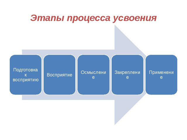 Этапы процесса усвоения