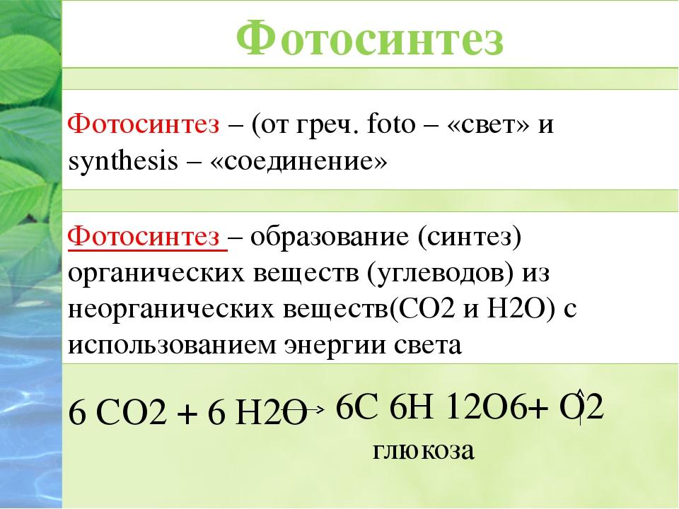 Фотосинтез – (от греч. foto – «cвет» и synthesis – «соединение» 6 СО2 + 6 Н2О...
