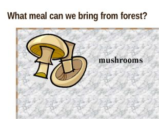 What meal can we bring from forest? mushrooms