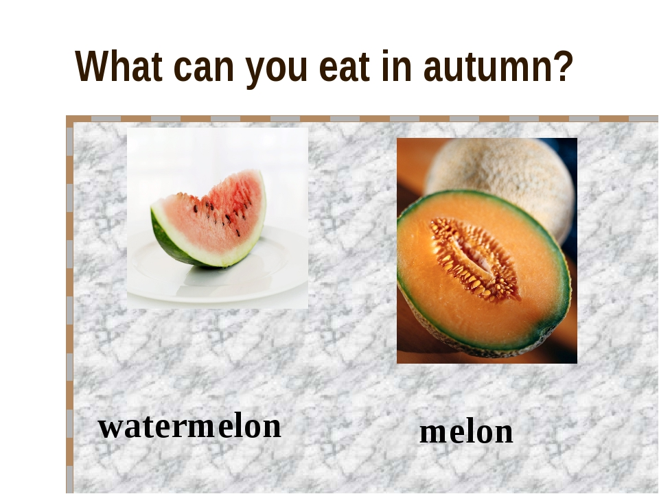 What can you eat in autumn? watermelon melon