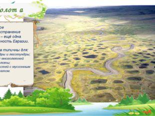 Болот а Широкое распространение болот – ещё одна особенность Евразии. Болота