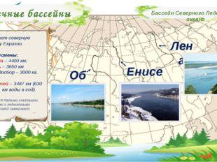 Речные бассейны Бассейн Северного Ледовитого океана Занимает северную окраину