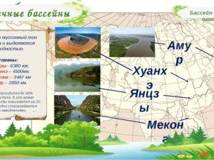 Речные бассейны Бассейн Тихого океана Имеют муссонный тип режима и выделяются