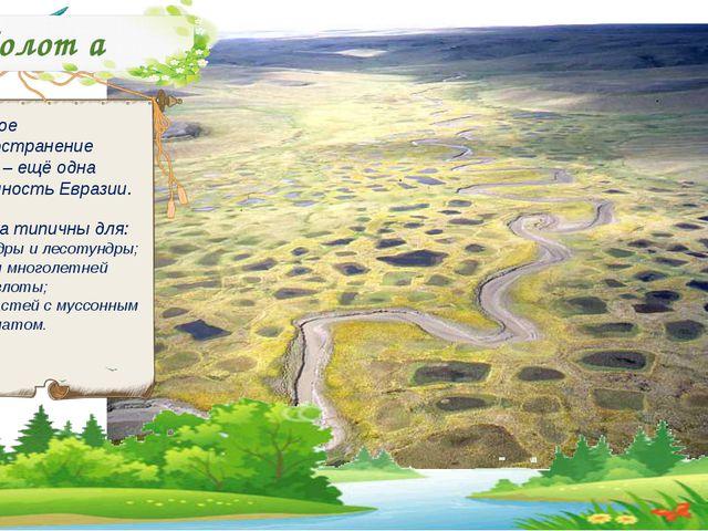 Болот а Широкое распространение болот – ещё одна особенность Евразии. Болота...