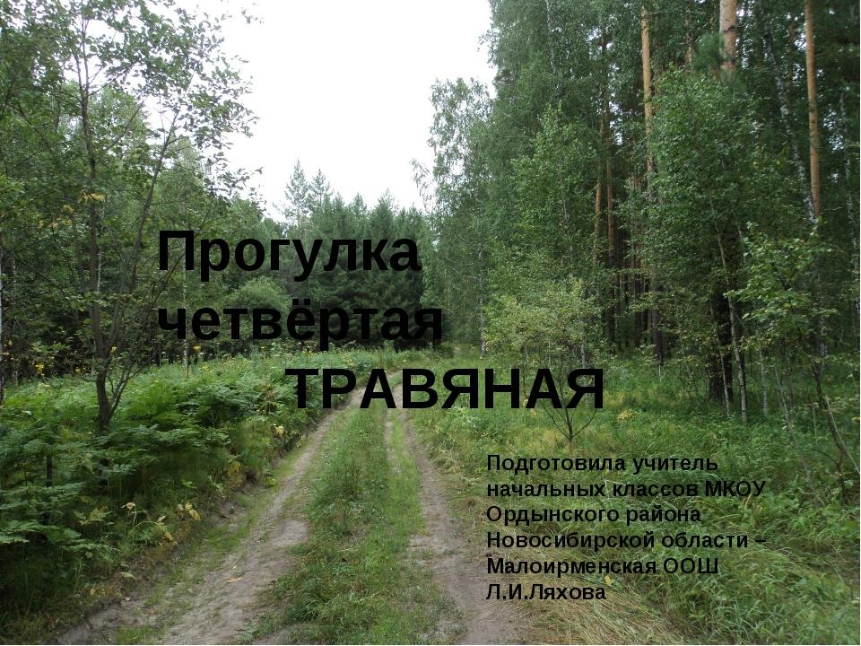 Прогулка четвёртая ТРАВЯНАЯ Подготовила учитель начальных классов МКОУ Ордынс...