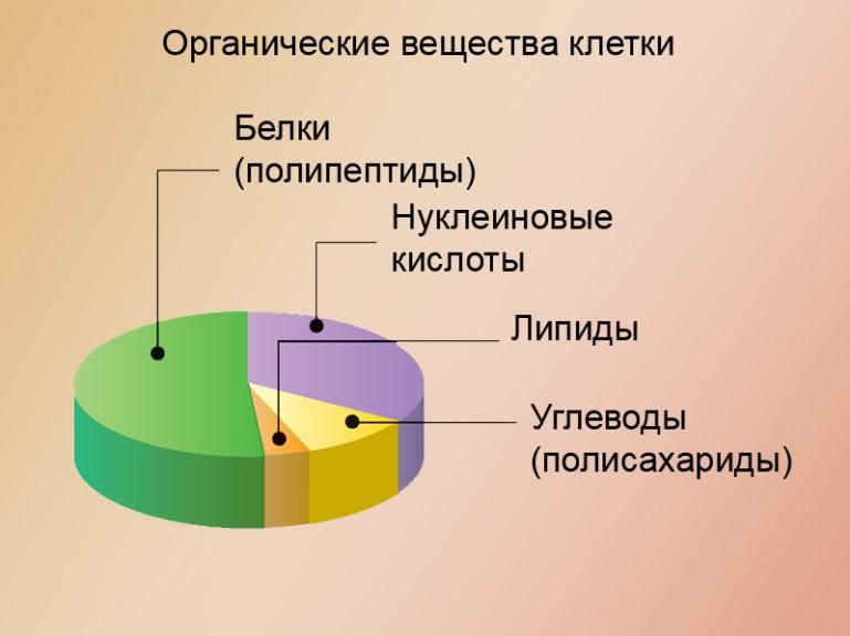 http://files.school-collection.edu.ru/dlrstore/000004a6-1000-4ddd-55a9-210046bc4324/127.jpg