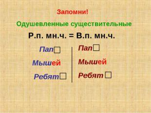 Запомни! Одушевленные существительные Р.п. мн.ч. = В.п. мн.ч. Пап Мышей Ребят
