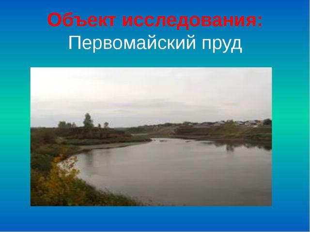 Объект исследования: Первомайский пруд