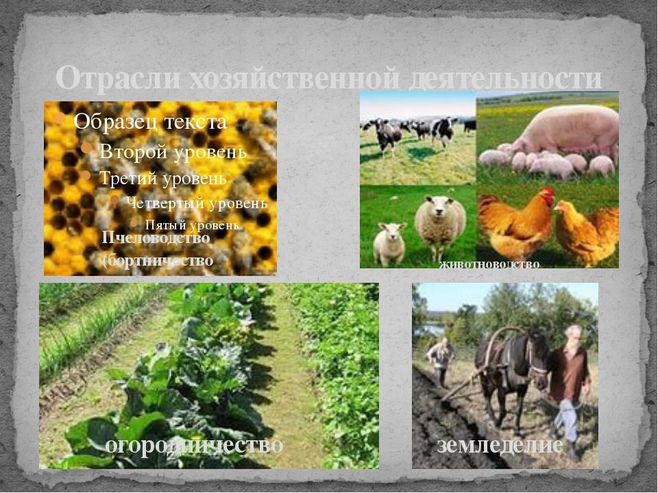 Отрасли хозяйственной деятельности Пчеловодство (бортничество животноводство...
