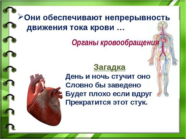 Они обеспечивают непрерывность движения тока крови … Органы кровообращения За...