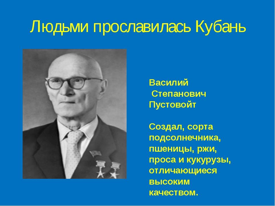 Людьми прославилась Кубань Василий Степанович Пустовойт Создал, сорта подсолн...