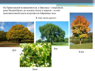 На Приволжской возвышенности, в Заволжье - в верховьях реки Малый Иргиз, на с
