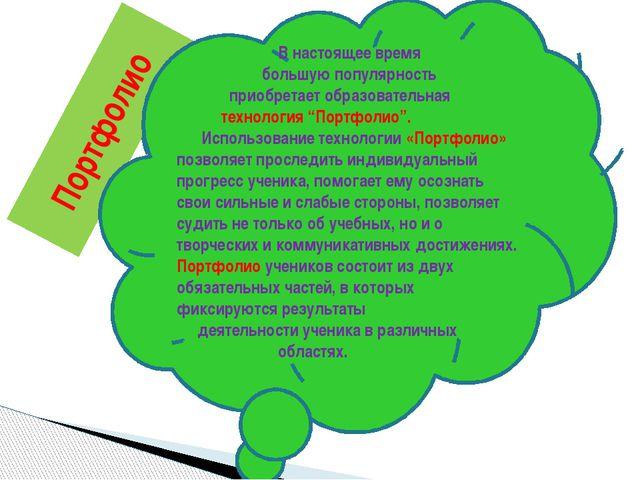 Портфолио В настоящее время большую популярность приобретает образовательная...