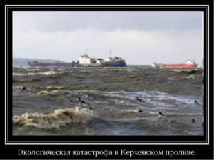 Экологическая катастрофа в Керченском проливе.