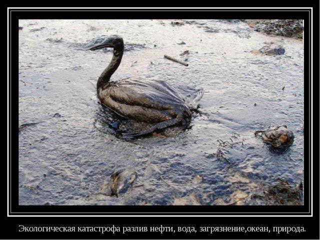 Экологическая катастрофа разлив нефти, вода, загрязнение,океан, природа.