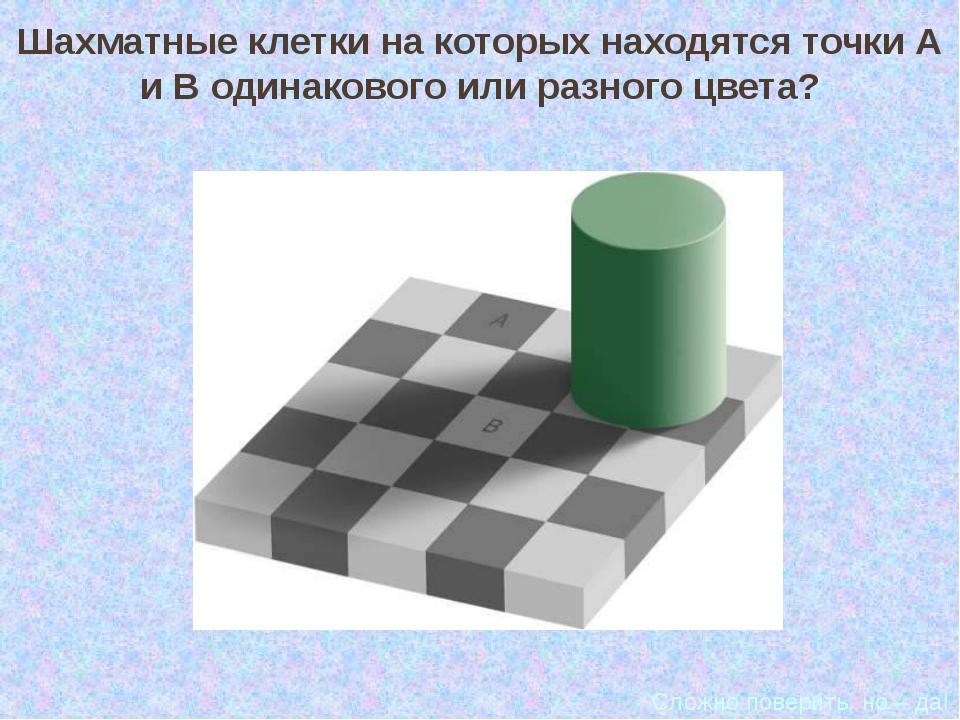 Шахматные клетки на которых находятся точки А и В одинакового или разного цве...
