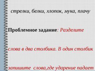 Тема: «Ударение», ( 2 класс). На доске записаны слова: пропасть, замок, круж