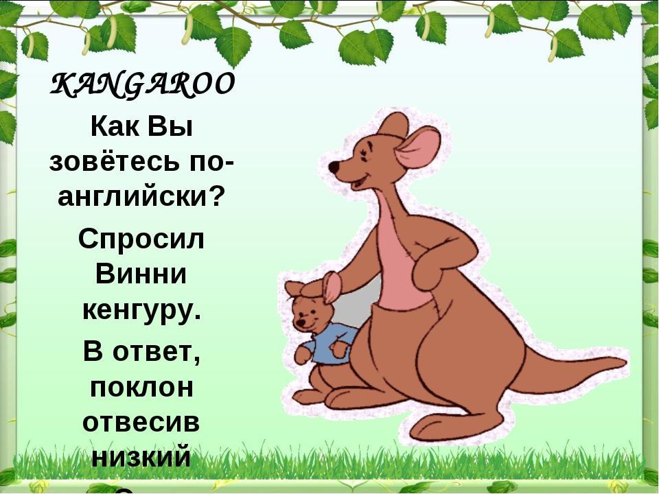 KANGAROO Как Вы зовётесь по-английски? Спросил Винни кенгуру. В ответ, поклон...