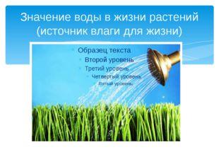 Значение воды в жизни растений (источник влаги для жизни)