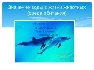 Значение воды в жизни животных (среда обитания)