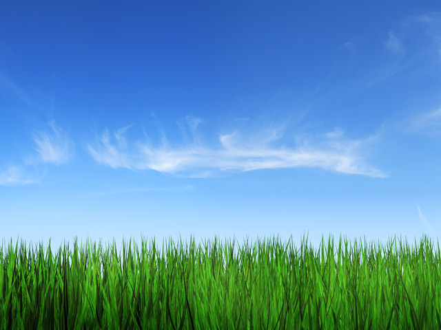 4-Designer Grass sky picture material 4