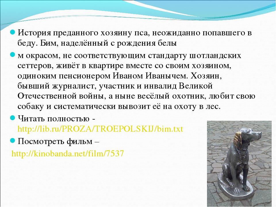 История преданного хозяину пса, неожиданно попавшего в беду. Бим, наделённый...