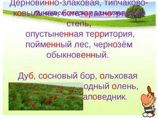 Лингвистическая разминка Дерновинно-злаковая, типчаково-ковыльная, богаторазн