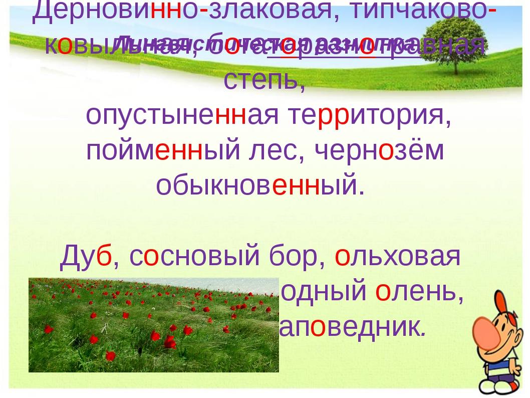 Лингвистическая разминка Дерновинно-злаковая, типчаково-ковыльная, богаторазн...
