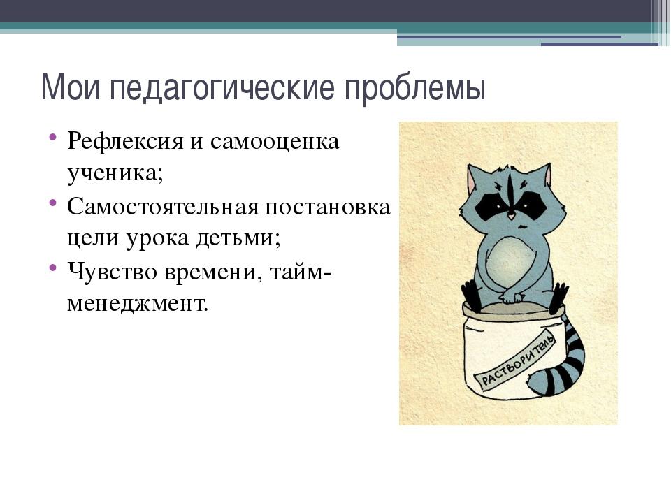 Мои педагогические проблемы Рефлексия и самооценка ученика; Самостоятельная п...
