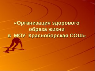 «Организация здорового образа жизни в МОУ Красноборская СОШ»