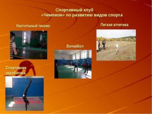 Спортивный клуб «Чемпион» по развитию видов спорта Настольный теннис Легкая а