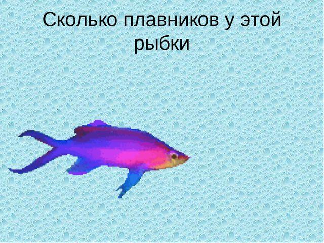 Сколько плавников у этой рыбки